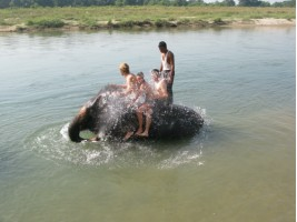 Getting wet on the elephant shower with Marty